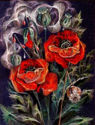 Картинка изонить бабочка - 07c